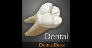 BoneBox